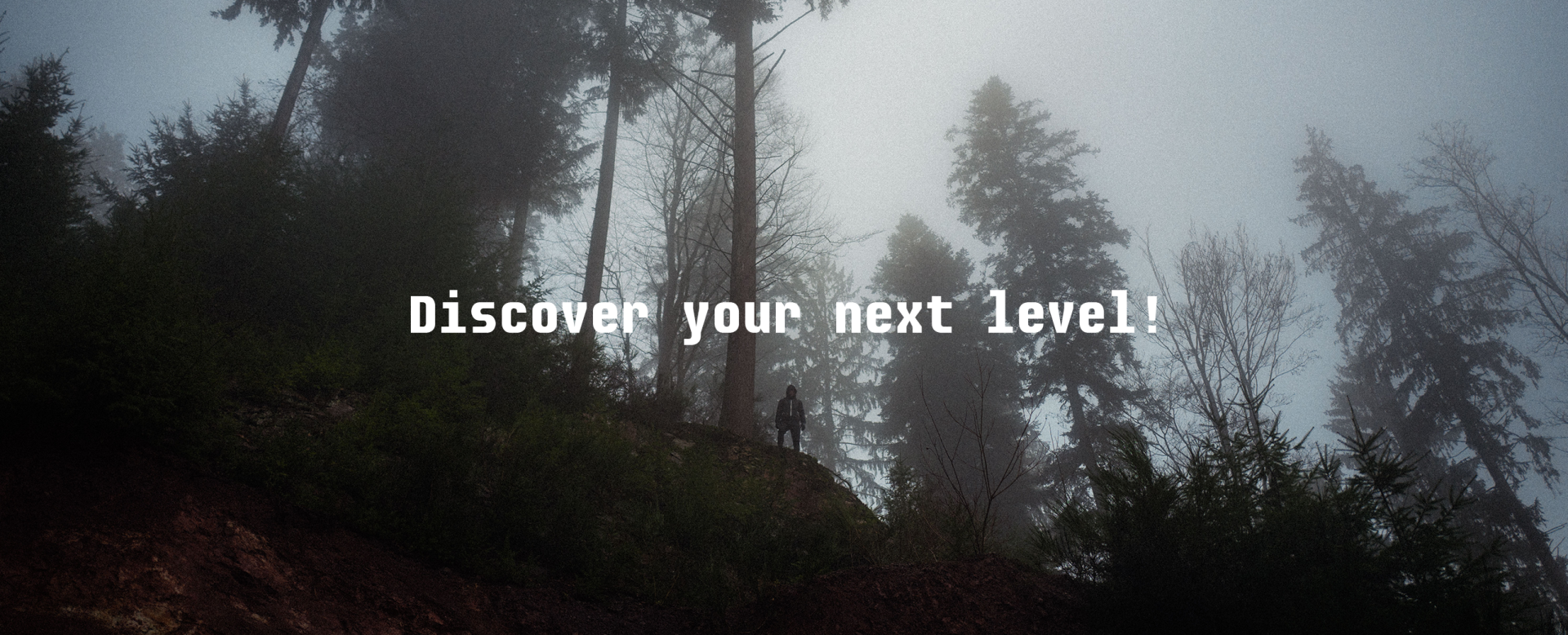 Discover tapio - Discover your next level