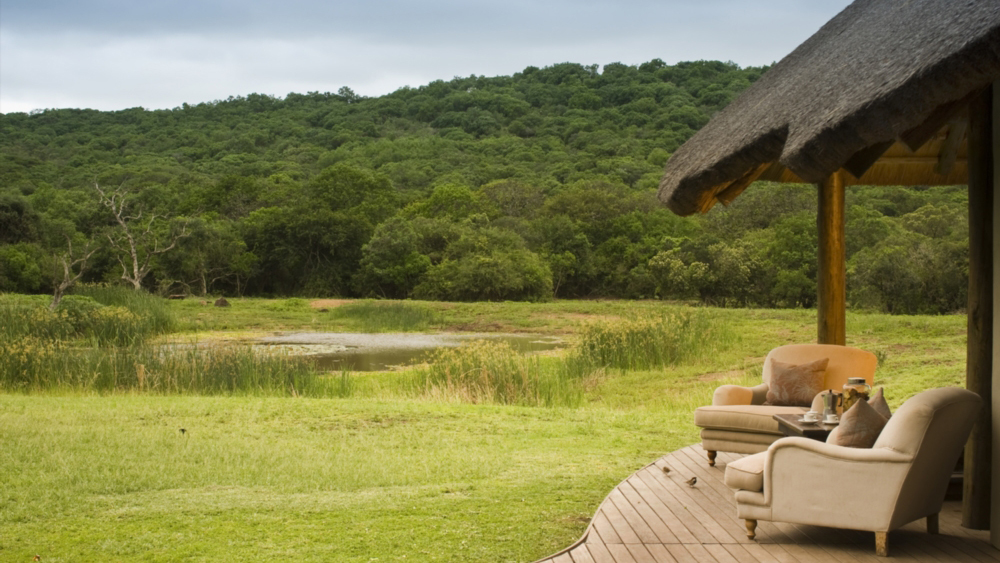 andbeyond-phinda-zuka-lodge-1