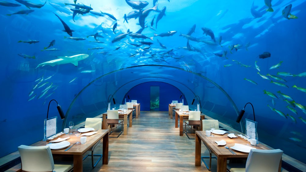conrad-maldives ithaa-undersea-restaurant-high