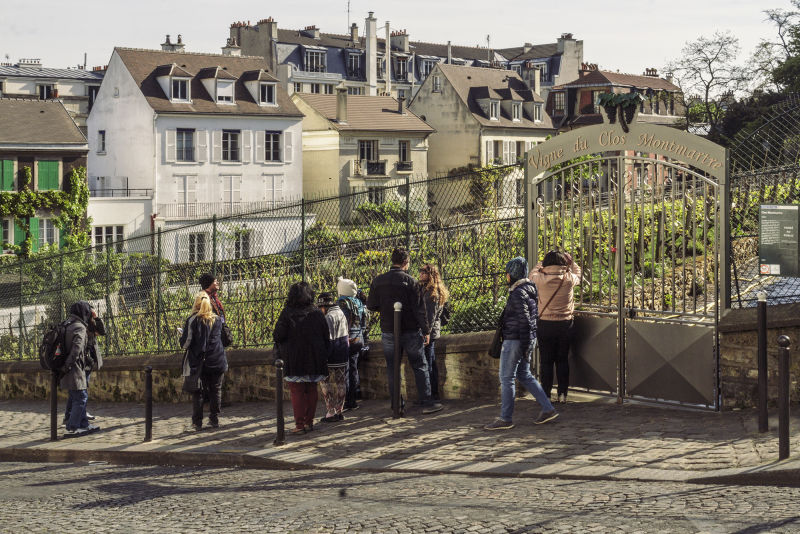 Montmartre still has  a working vineyard, a throwback to its rural heritage.