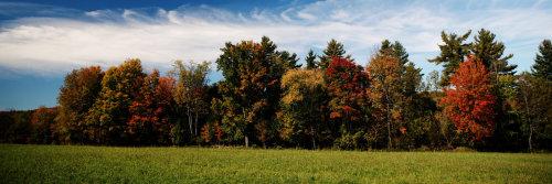 autumn-title