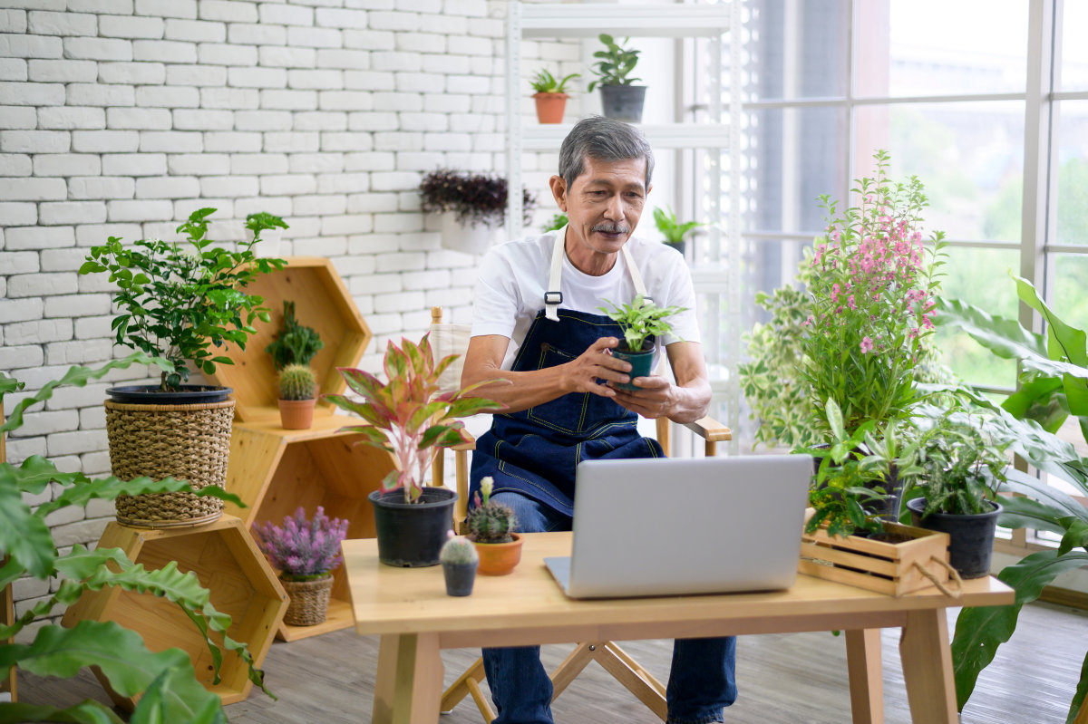 A man sits in front of his laptop computer, holding up a plant to show during a live shopping session.