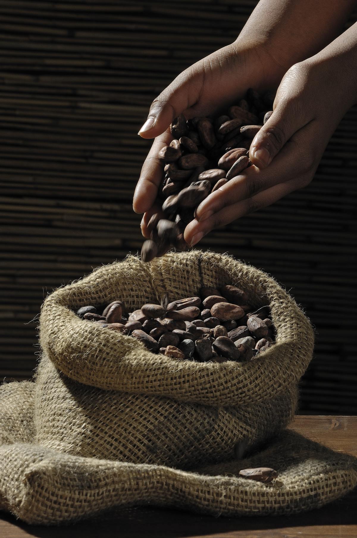 kakaobohnen-wie-erkenne-ich-falschgeld