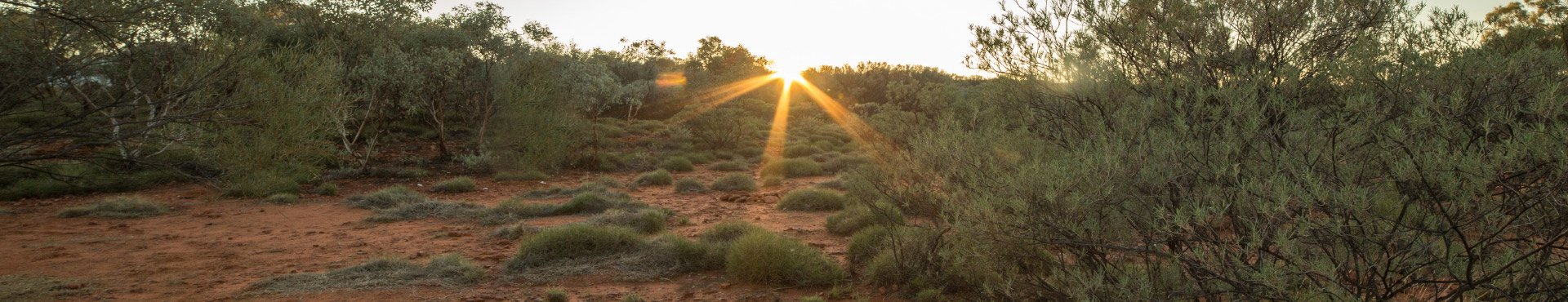 Shine Lawyers | Australian Outback | Shine Lawyers