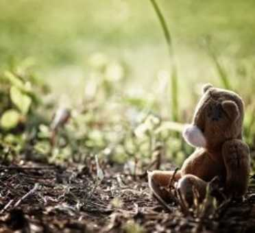 Shine Lawyers | Lost teddy bear sitting in grass | Shine Lawyers