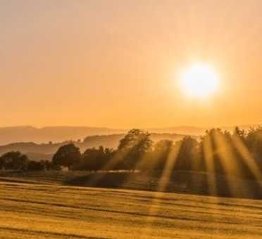 Shine Lawyers | Pristine farmland