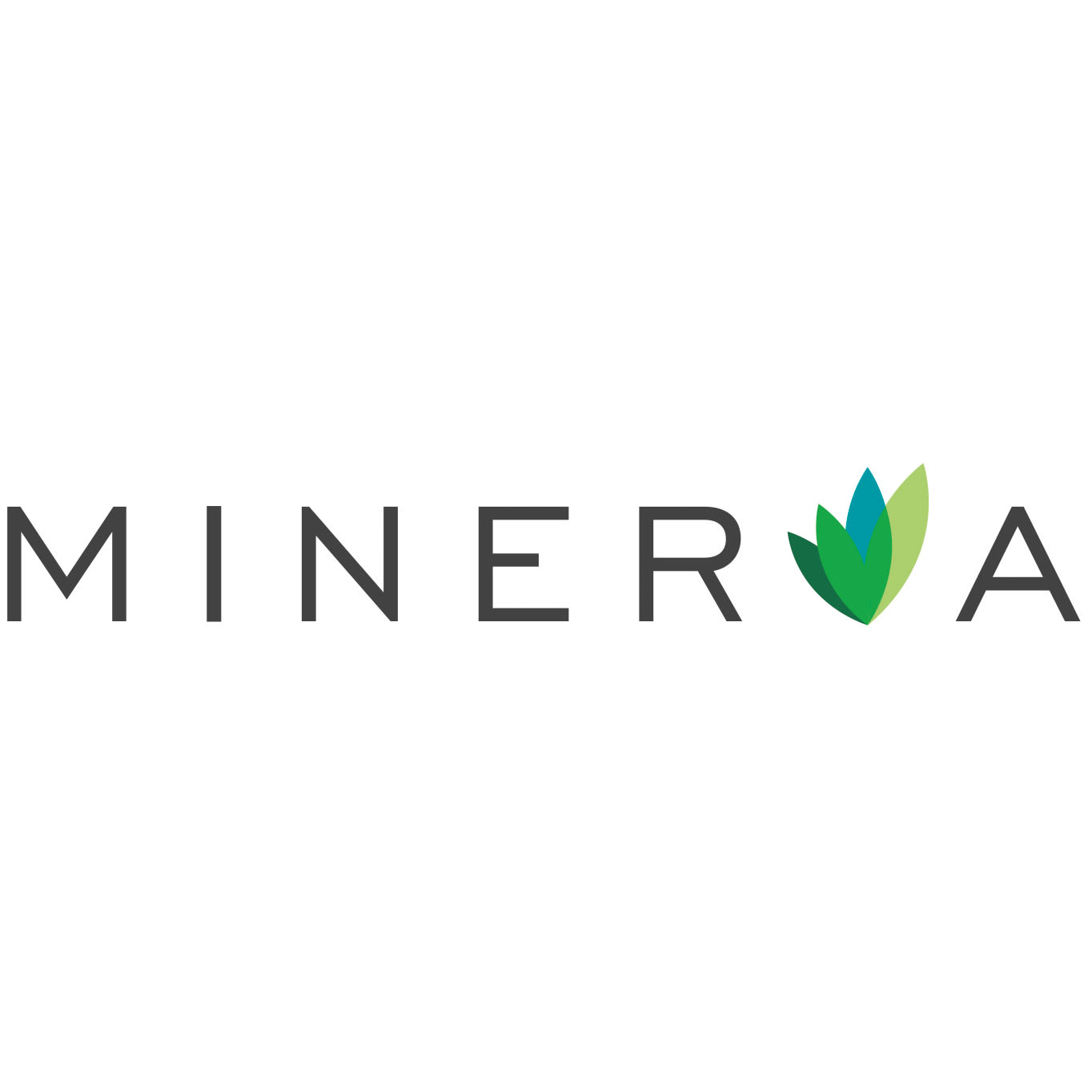 logo for Minerva BC charity