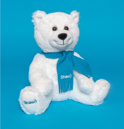Shaw teddy-bear on a blue background