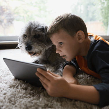 A boy and his dog stream an HD movie on a tablet connected to the family's WiFi network.