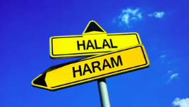 All about halal food