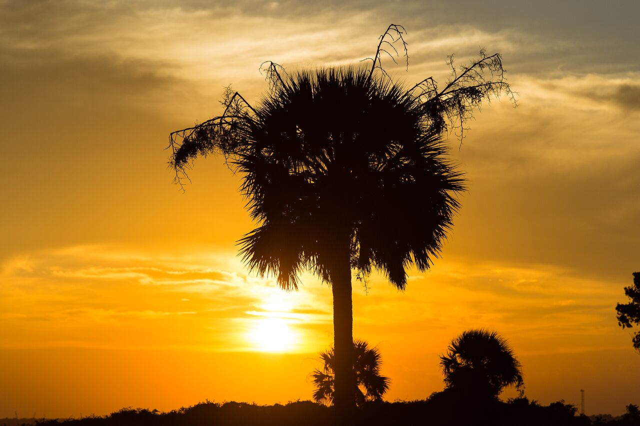 Isle-of-Palms-Sunset
