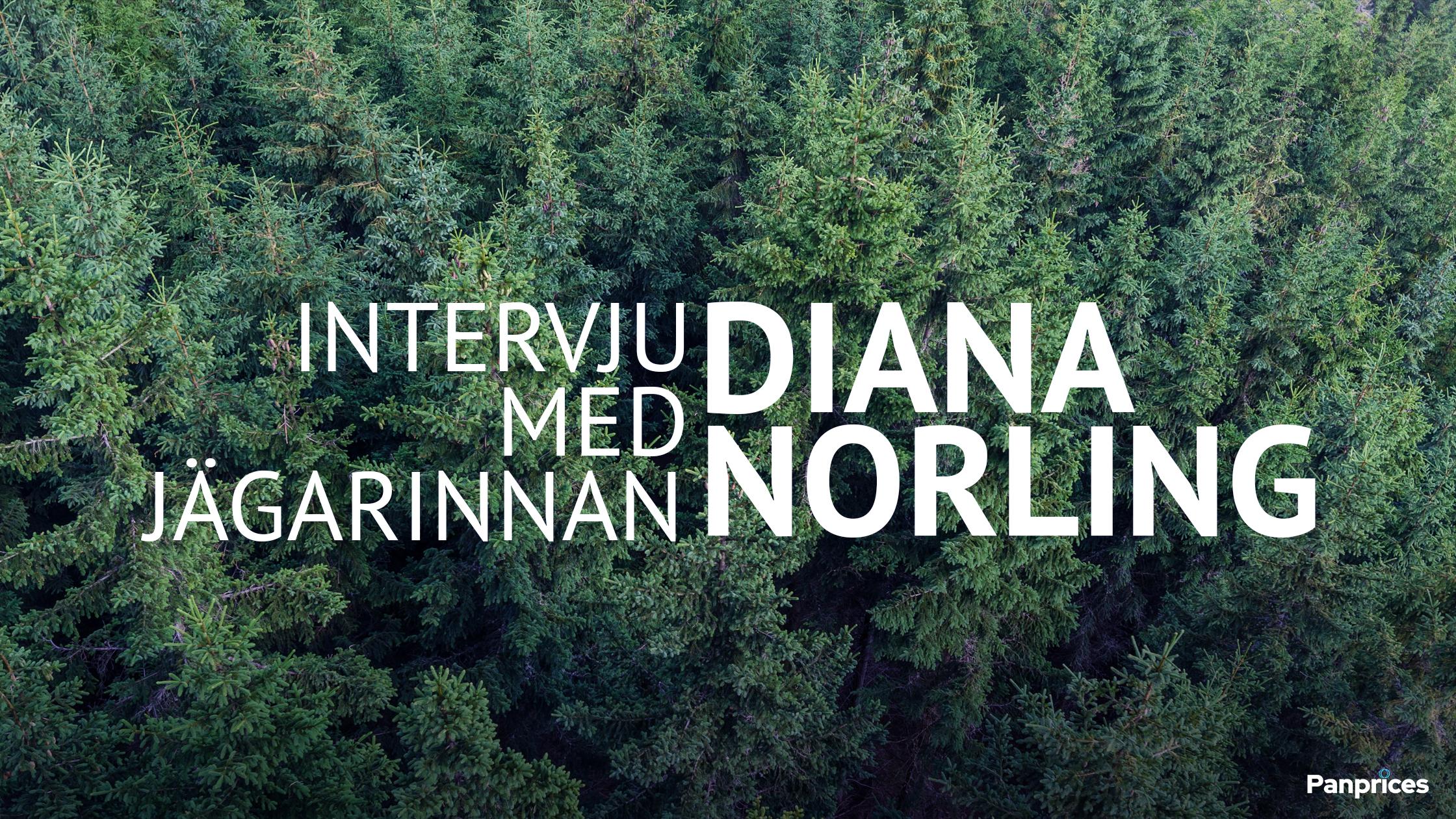 Intervju med jägarinnan Diana Norling