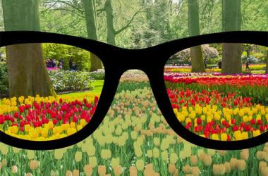 farbenblinde Brille