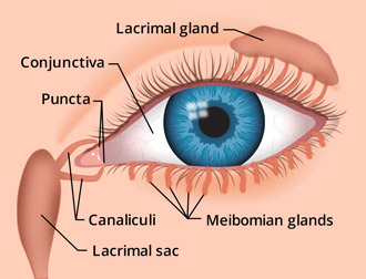 Eye discharge: Causes, types, treatment
