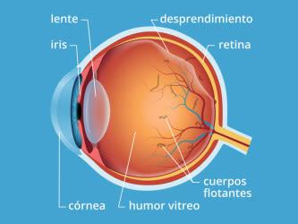 como sacar los flotadores de los ojos