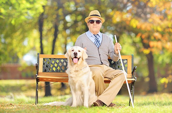 blind man wearing sunglasses outdoors with seeing eye dog