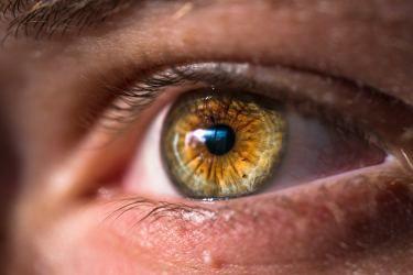 Acercamiento a un ojo color avellana