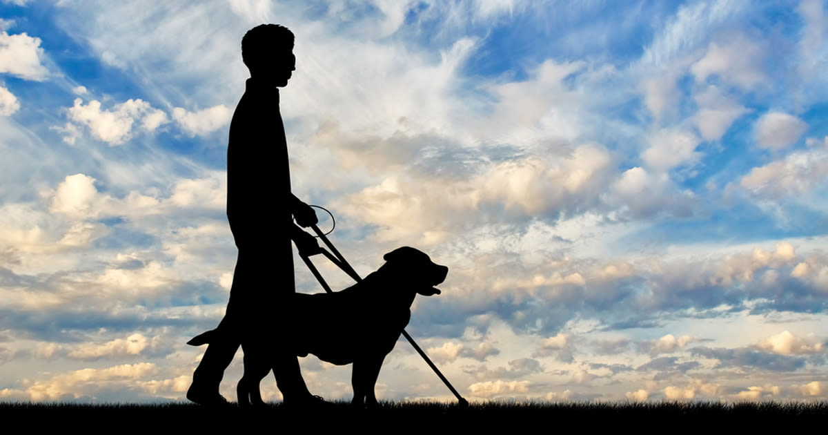 Silhouette of blind man with his guide dog