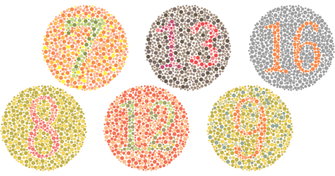ishihara color blind test