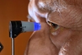 Elderly man receiving an eye exam