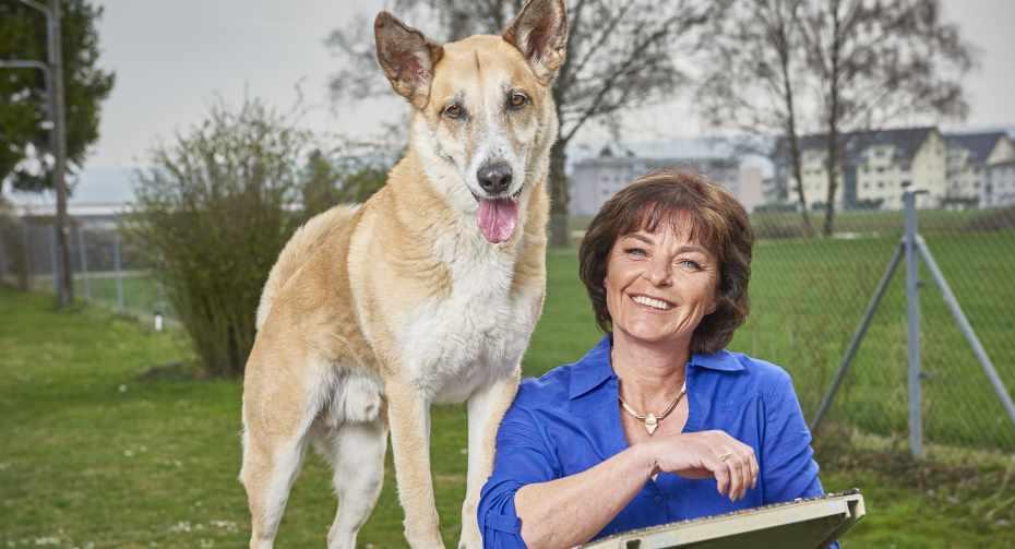 Hunde Plausch Tage mit Monika Fasnacht