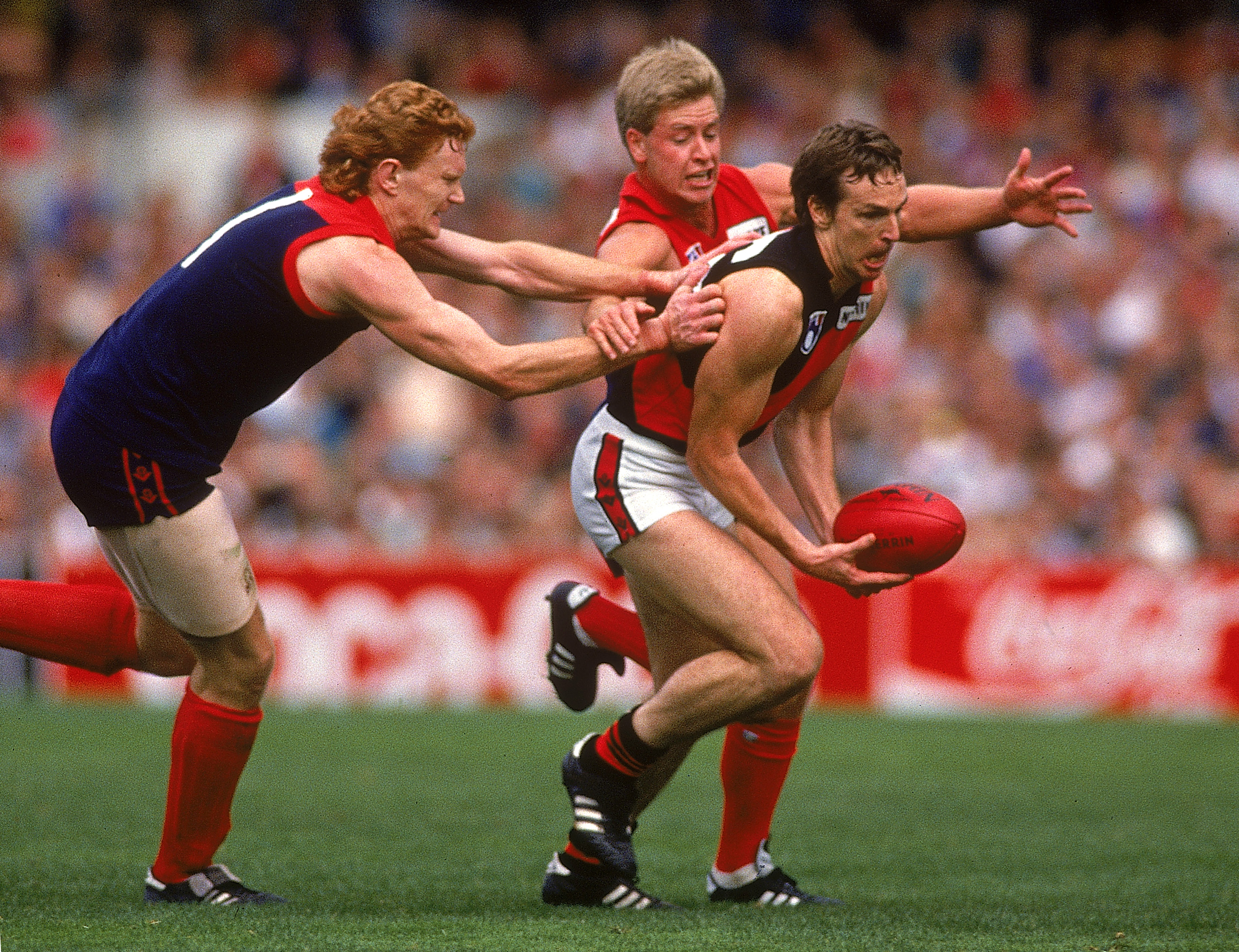 Daniher playing