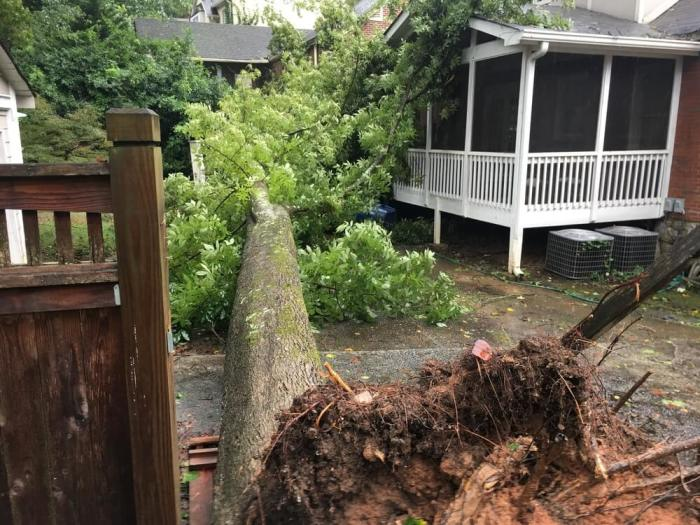 A tree fallen on a house after a hurricane.