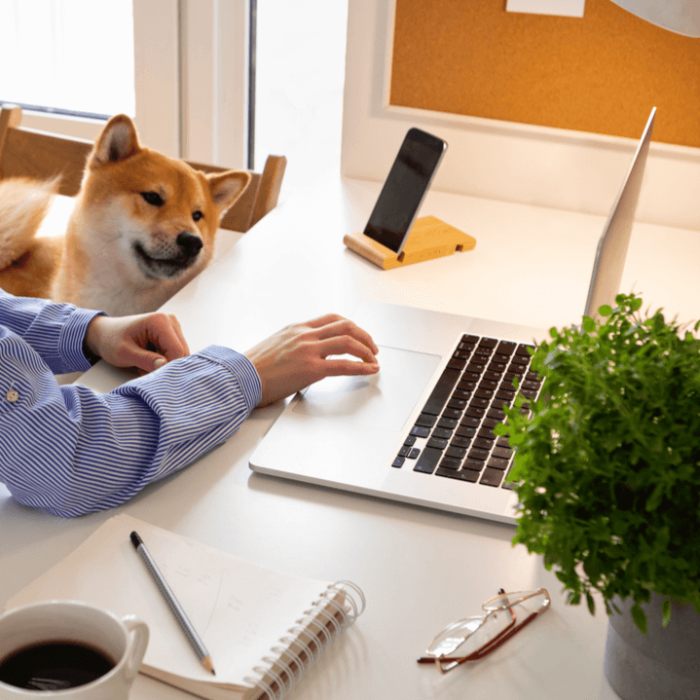 A woman working from home on her laptop with her dog next to her.
