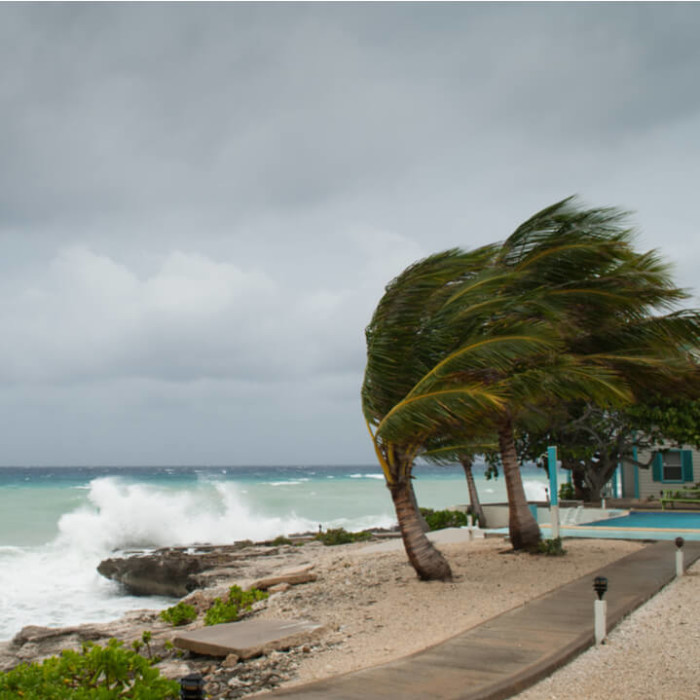A hurricane storm on a beach causing large waves and high winds making palm trees blow around.