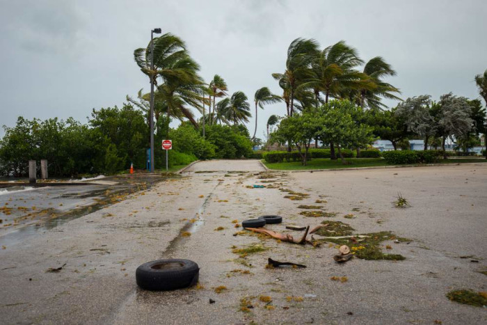 Hurricane-force winds threaten to uproot palm trees in a tropical location.