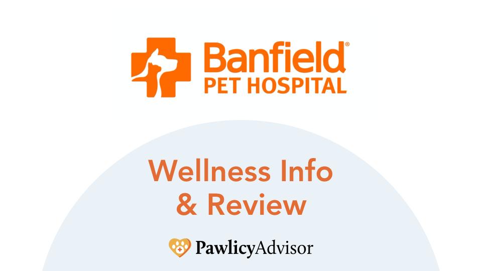 banfield pet insurance wellness info and review