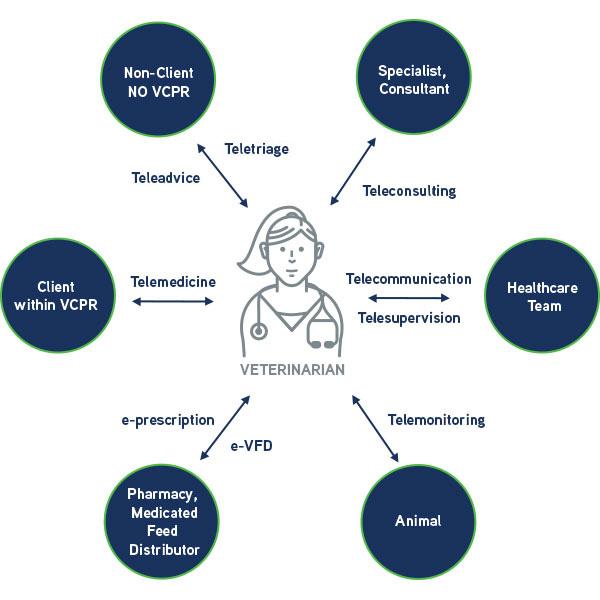 Veterinary telehealth services diagram