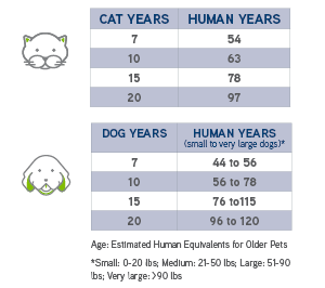 Pet ages compared to human years AVMA