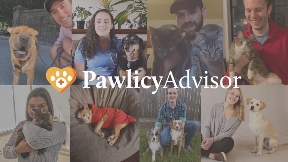 Pawlicy Advisor Team with Logo