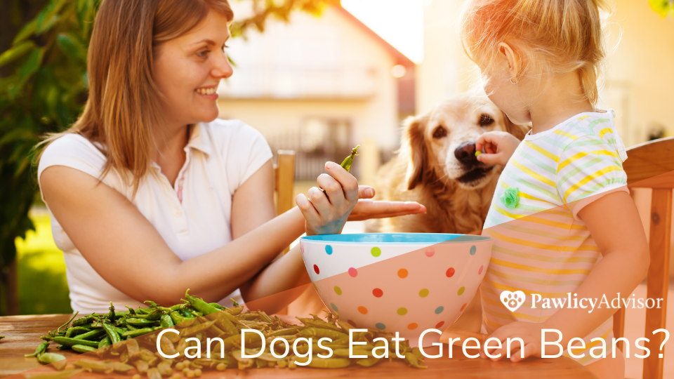 Mother and daughter preparing green beans with dog
