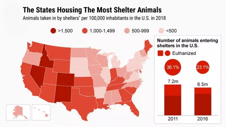 Sheltered Animals By State 2018