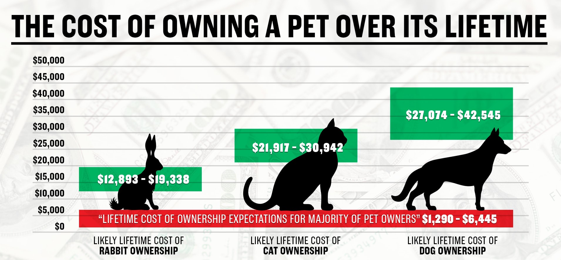 lifetime cost of owning a pet