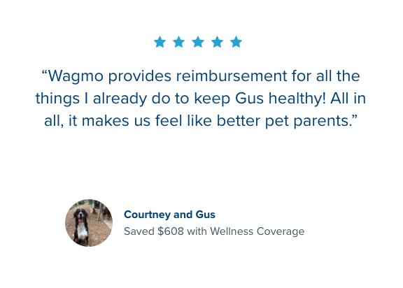 Wagmo customer review