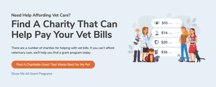 charities to help afford vet care