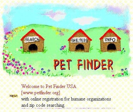 Old Petfinder 1998 homepage design