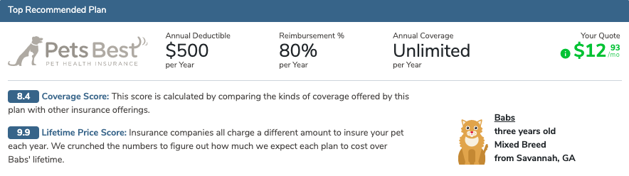 cat insurance recommendation