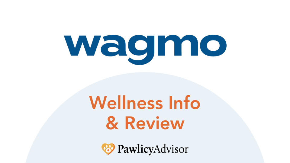 wagmo wellness info and review