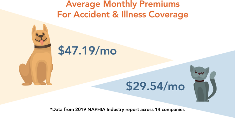 average monthly premiums for accident and illness insurance on dogs vs cats