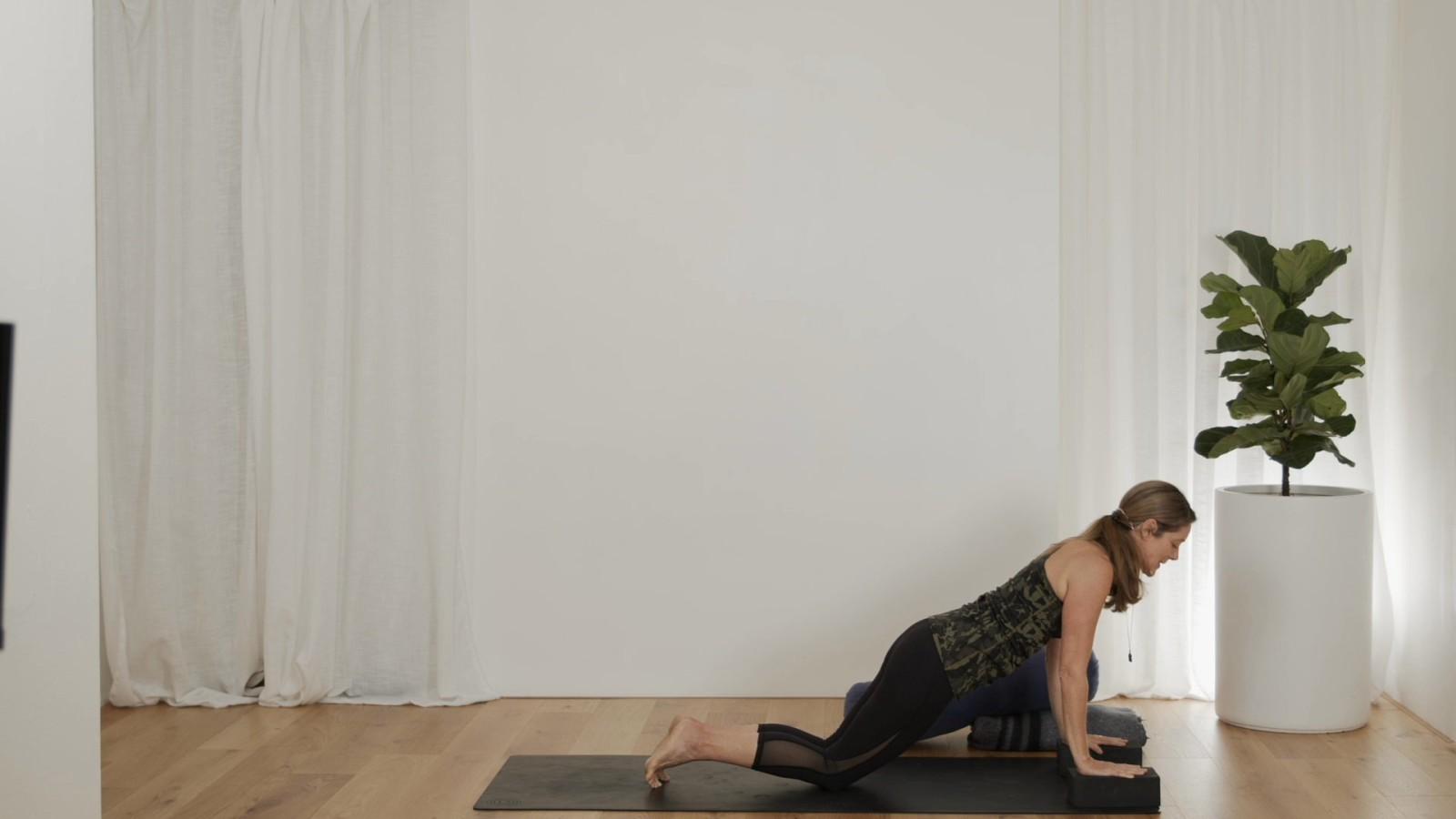 Prenatal Yoga Finding Balance with Vanessa Mitchell