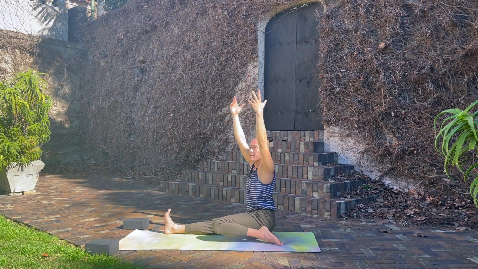 Hip Strengthening Reverse Vinyasa Flow with Johnson Chong