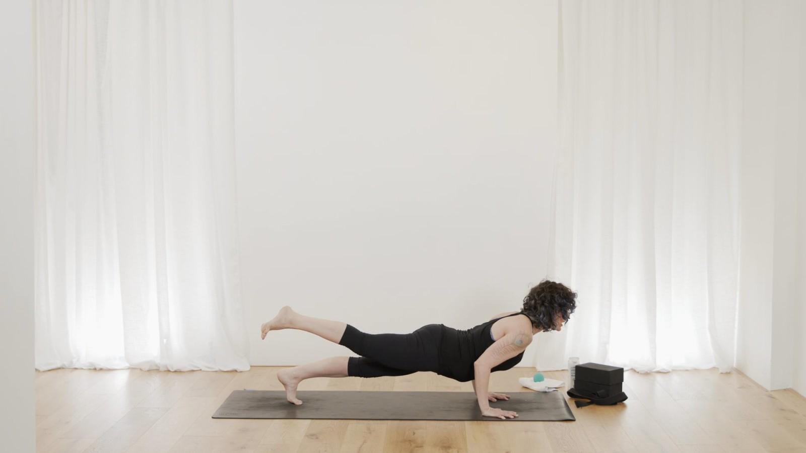 Arm Balance Myoflow with Vicki Smart