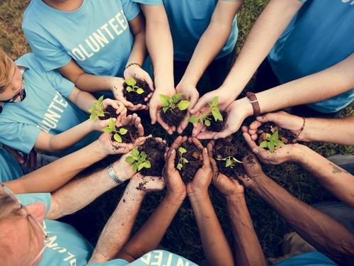 Artigo Voluntariado empresarial: quais são os benefícios para empresas e funcionários?