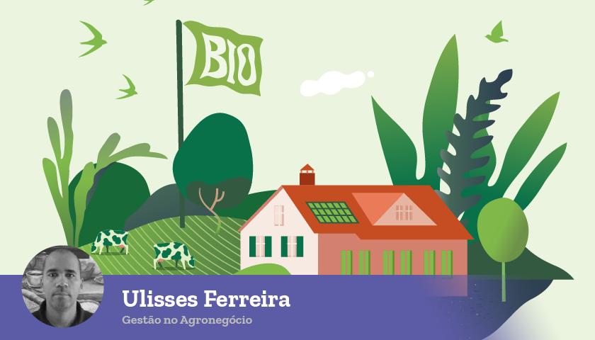 Imagem de capa O que nutre as disputas entre agro, cidades e meio ambiente?