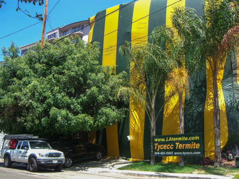 Hollywood Hills 3 Story House Fumigation