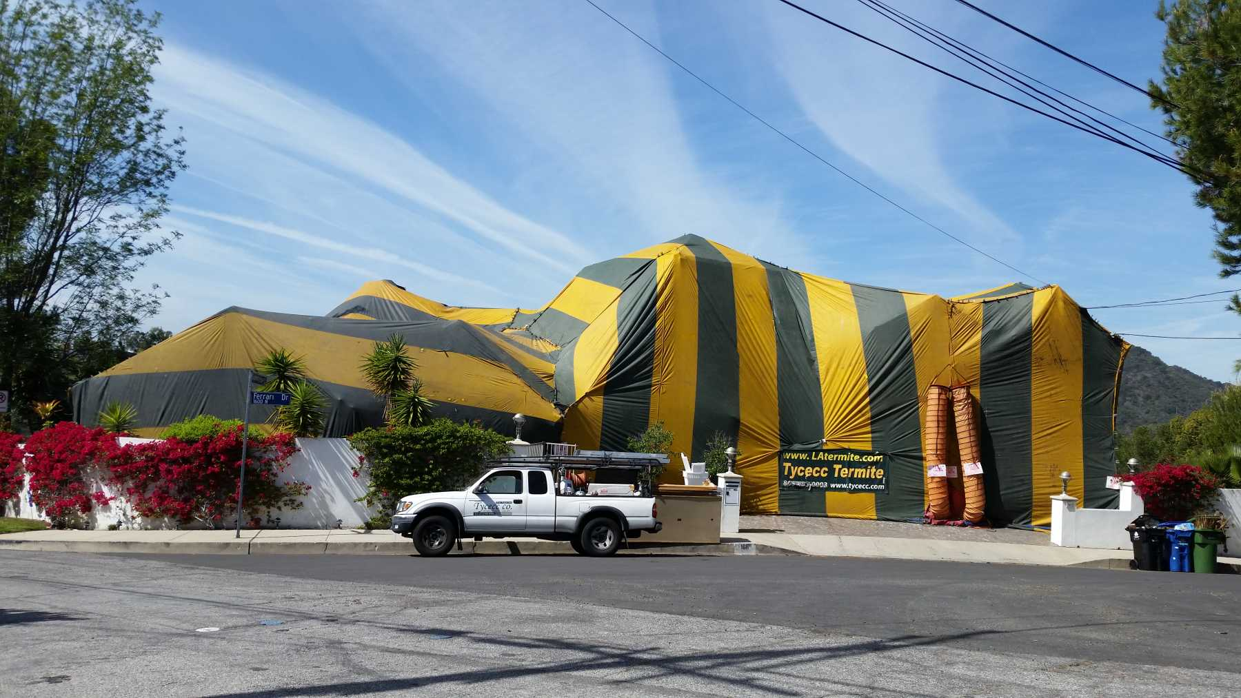 Tycecc Termite Control Pest Exterminator Los Angeles Ca